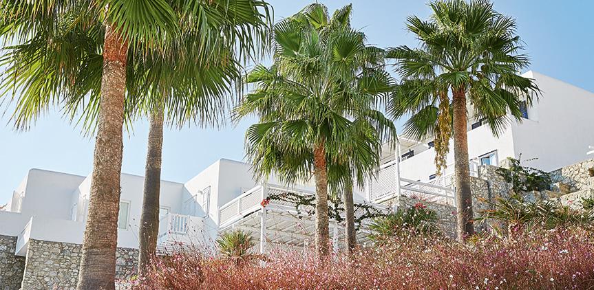 island-bungalow-garden-view